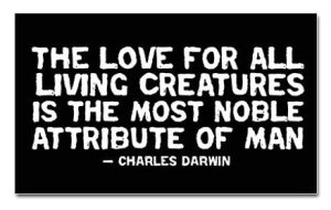 darwin-quote