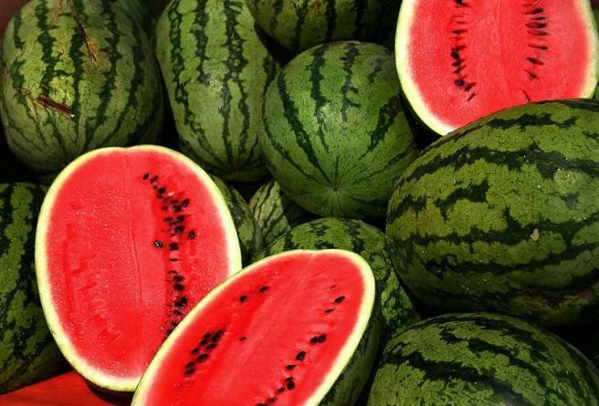 watermelons-857